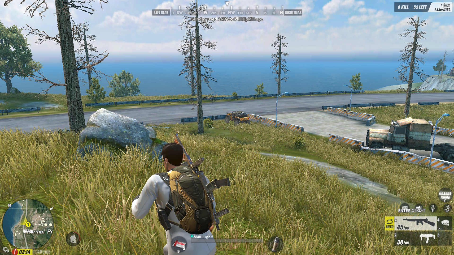 pc rules of survival not working